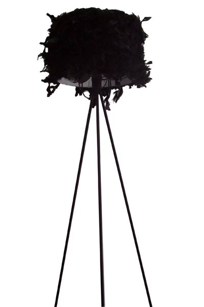 Floor Lamp - Steel & Feather